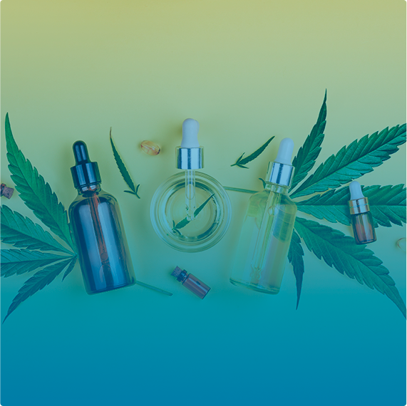 Coalition Technologies is an Innovative Cannabis SEO Company